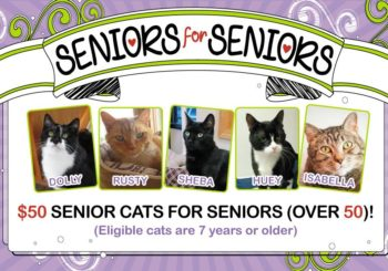 Our Seniors for Seniors Program