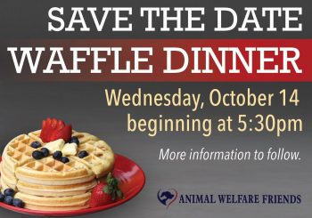 Save the Date: Waffle Dinner