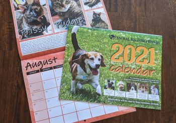 Our 2021 Calendars Are In!